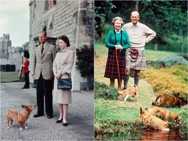 Corgi và Nữ hoàng Elizabeth